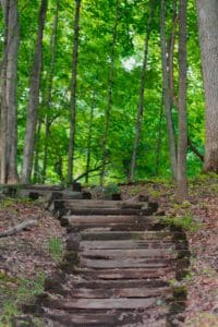 Precious Steps